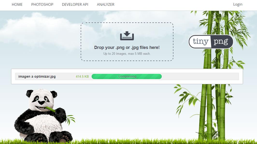 como optimizar imagenes para tu web tinypng