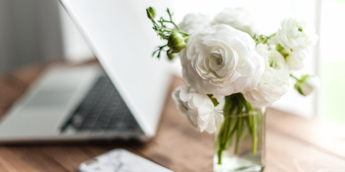 Que es Wordpress y como instalarlo